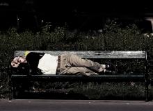 Sleeping to dream
